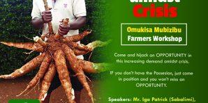 Opportunity Amidst Crisis – 'Omukisa Mu Matigga' Cassava Workshop 2017